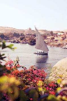 A view from the Sofitel Legend Old Cataract Aswan hotel in Aswan, Egypt. Photo by: James Bedford