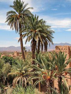 Kasbah Amerhidil Ouarzazate Maroc