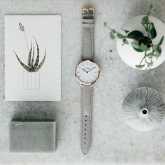 Light up your day with grey we love this scale and products we have @clusewatches #clusewatches @paperbagoslo