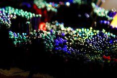 Beadwork in fading light - Teaser