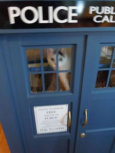 Kitty TARDIS Playhouse For Cats Who Love The Doctor.  I feel like I should make this for my cat Marley.  He loves to lay and watch Doctor Who and he kinda looks like Matt Smith, so he needs a TARDIS.