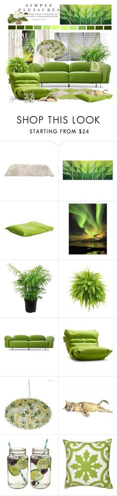 """""""Simple Pleasures in Greenery*"""" by olga1402 ❤ liked on Polyvore featuring interior, interiors, interior design, home, home decor, interior decorating, Moooi, Cathy's Concepts, The French Bee and GREEN"""