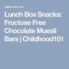 Lunch Box Snacks: Fructose Free Chocolate Muesli Bars   Childhood101