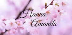 Hanna Amanda