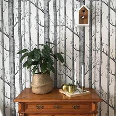 Ein Klassiker: Die Baumtapete Lieben Wir Sehr! #wallpaper #tapete #wald #