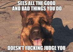Why Dogmeat is best follower