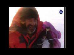Expedición TransGroenlandia 2002 de Ramón Larramendi (6/10) - Rumbo a Thule: Los temidos vientos catabáticos aparecen. Estos fuertes vientos que se producen en regiones polares barriendo todo lo que se encuentra a su paso retuvieron a nuestros aventureros varios días. Ramones, Fictional Characters, Forts, Scouts, Fantasy Characters
