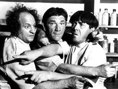 The Three Stooges, Larry Fine, Shemp Howard, Moe Howard, 1947 The Three Stooges, The Stooges, Classic Hollywood, Old Hollywood, Abbott And Costello, Classic Comedies, Photo Vintage, Vintage Photos, Laurel And Hardy