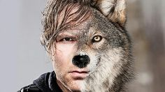 Dean Anbrose ? Mabey wolf