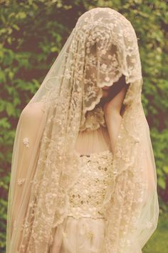 absolutely beautiful lace veil