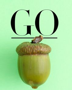 J.Crew SUB: Big news inside (for today only) Let's have some fun and energize with curiosity