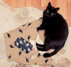 black cat + miumiu goodies
