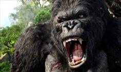 VIDEO. Gigantopithecus blacki : Ce singe géant aux allures de King-Kong - http://www.camerpost.com/video-gigantopitheque-ce-singe-geant-aux-allures-de-king-kong/?utm_source=PN&utm_medium=CAMER+POST&utm_campaign=SNAP%2Bfrom%2BCAMERPOST