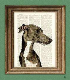 Italian Greyhound dog beautifully upcycled vintage dictionary page book art print