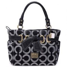 CHEAP COACH PURSES!!! This is a good substitute when your broke!!