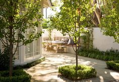 Shady patios with tree canopy make cozy gathering spaces