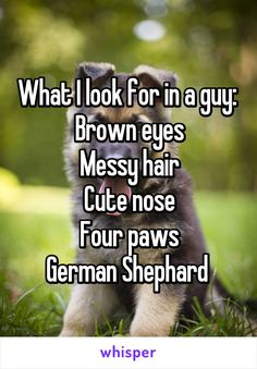 What I look for in a guy:  Brown eyes Messy hair Cute nose Four paws German…