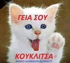 Emoticon, Emoji, Good Night, Good Morning, Yolo, Beautiful Pictures, Jokes, Author, Stickers
