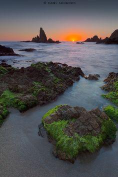 Reef of mermaids..again by Isabel Asurmendi on 500px