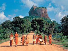 Forse questa è la #fotografia più bella mai scattata in #SriLanka