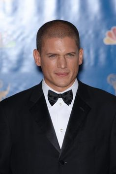 Wentworth Miller Picture 39