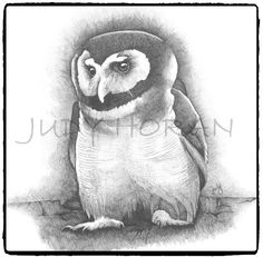 Brown Owl (2013) is an ink rendering of the beautiful and sweet brown owl