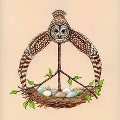 Owl for peace.