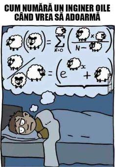 Cum numara un inginer oile cand vrea sa adoarma Funny Memes, Hilarious, Jokes, Math Puns, Science Humor, Mathematics, Funny Animals, Haha, Funny Pictures