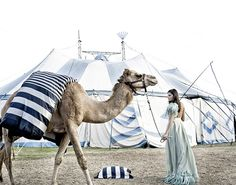 tent + stripes + camel + feathers