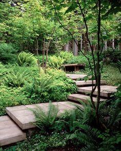 Here's a lush shady spot to sit and enjoy the surroundings. Have a seat?  Photo: Steve Dubinsky Designer: Paul R. Broadhurst + Associates (Seattle, WA) Location: San Juan Island . . . #gardendesign #shadegarden #sanjuanisland #plants #seattle #landscapedesign #landscapedesigner #gardendesigner #asla #landscapearchitecture #gardeninspiration #haveaseat #enjoytheview  via ✨ @padgram ✨(http://dl.padgram.com)