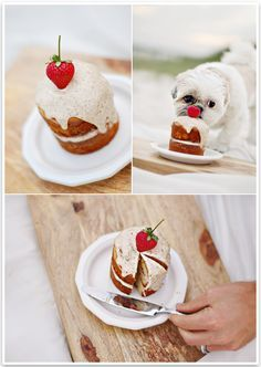 The Best Dog Birthday Cake Recipe Coco S Weekend