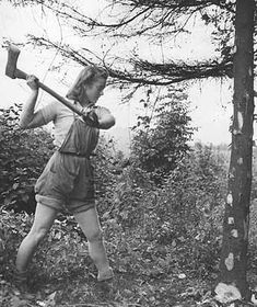 A member of the Women's Land Army felling a young tree with an axe. 1941.  by Fred Ramage