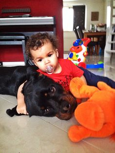 #Rottweiler and baby