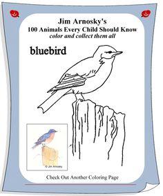 543 Best Art: Worksheets/Printables images | Art education lessons ...