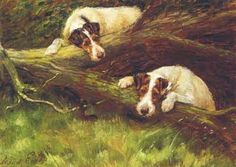 Wire Fox Terrier Dogs by Maud Earl 1907 New Note Cards | eBay