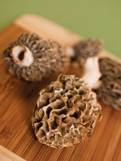 What to know when hunting for morel mushrooms.