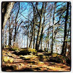 Rising Park hiking in Lancaster, Ohio