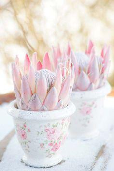Dekorationen von Rosa bis Pink bei Andrea Kuehnis Photography http://www.hochzeitswahn.de/inspirationsideen/dekorationen-von-rosa-bis-pink/ #flowers #decor #tabledecor