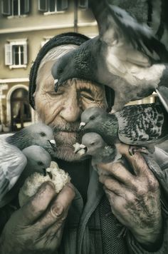 feeding the pigeons (by Sandro Sardoz) Famous Photography, Color Photography, Amazing Photography, Street Photography, Bird People, Man Beast, Face Study, Body Poses, People Of The World