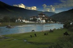 sometimes I wish I could run off and visit Bhutan and forget about the world