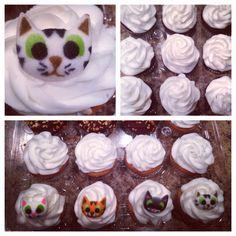 Cat cupcakes!