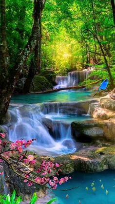 Beautiful Nature Pictures, Beautiful Nature Scenes, Nature Photos, Beautiful Landscapes, Beautiful World, Beautiful Scenery, Beautiful Places, Waterfall Scenery, Good Morning Roses
