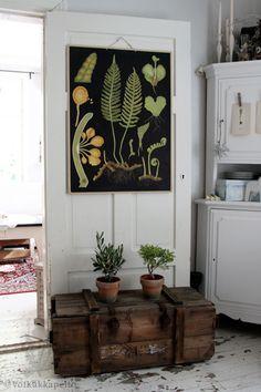 ferns in all their forms Decor, Home Decor Styles, Nature Decor, Interior Architecture Design, Naturalist Decor, Earthy Decor, Vintage Interior, Home Decor, Home Deco