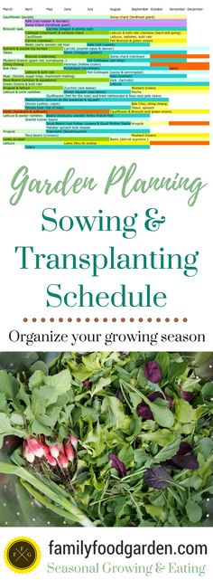 Creating Your Sowing & Transplanting Schedule