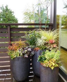 Tall planters help show the beauty of a massed arrangement of fall foliage