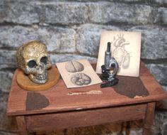 Dollhouse MIniature MICROSCOPE SKULL BONES Halloween Mad Scientist Medical Doctor. $18.00, via Etsy.