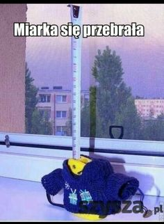Tylko mnie to śmieszy? Stupid Funny Memes, Wtf Funny, Hilarious, Funny Stuff, Reaction Pictures, Funny Pictures, Polish Memes, Weekend Humor, Best Memes Ever