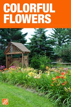 The Home Depot has everything you need for your home improvement projects. Click through to learn more about garden plants and more. Garden Yard Ideas, Backyard Projects, Garden Spaces, Backyard Patio, Garden Projects, Garden Tips, Patio Ideas, Backyard Ideas, Front House Landscaping