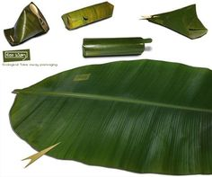 eco take-way banana leaf idea PD Food Packaging Design, Brand Packaging, Tea Packaging, Packaging Design Inspiration, Packaging Ideas, Organic Packaging, Innovative Packaging, Environmentally Friendly Packaging, Packing A Cooler
