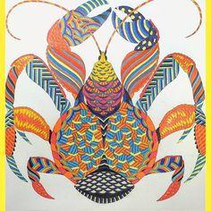 Millie Marotta's Curious Creatures - Coconut Crab